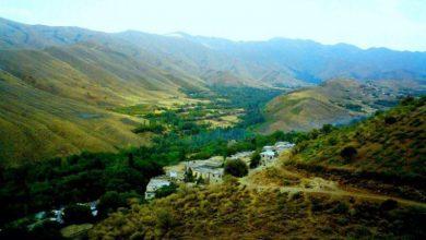 روستای آریان
