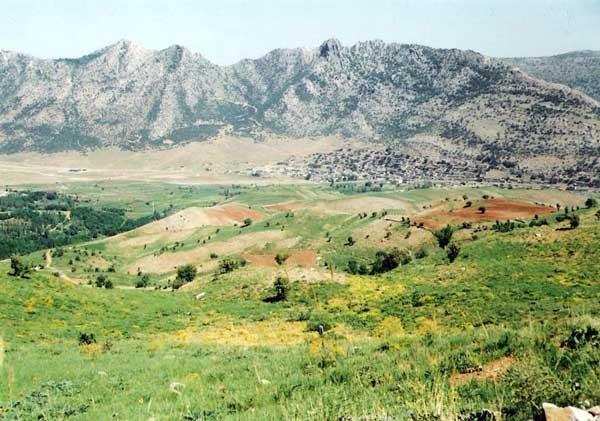 دشت روستای دزلی