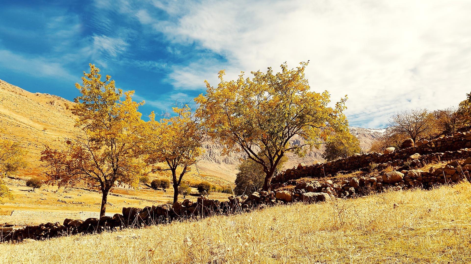 طبیعت زیبای پاییزی پاوه . عکس از آراس بابایی