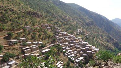 روستای ناو