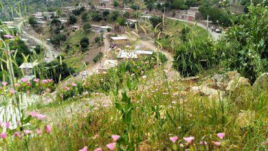 نمایی بسیار زیبا از روستای بیدرواز ( بیرواس ) - اردیبهشت 1396