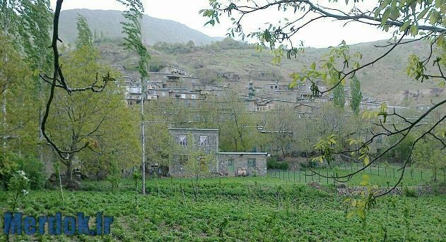 باغات روستای گواز