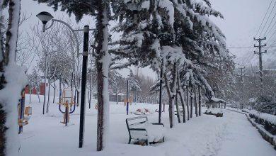 تصاویری از بارش برف در پاوه - زمستان 1390