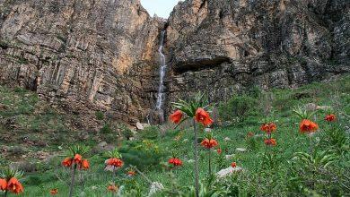 آبشار سلور - عکس از بهمن شهبازی - ۱۳ اردیبهشت ۱۳۹۵