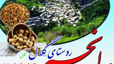 جشنواره انجیر و توت روستای گلال