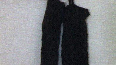 پويزوانه -ساق بند