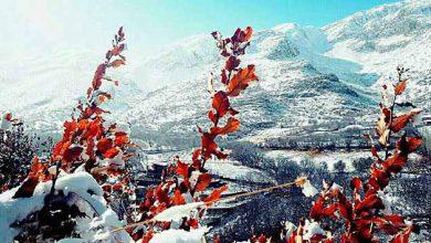 روستای چورژی - عکس از آریا خسروی