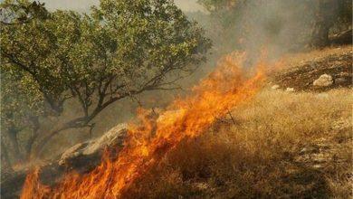 """آتشسوزی در ارتفاعات """"دشه"""" پاوه در شهریور 1395"""