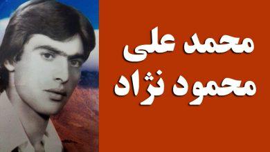 محمد علی محمود نژاد