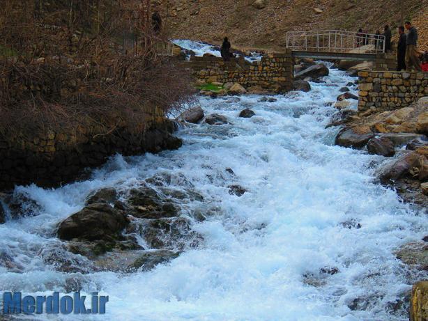 چشمه سفید آب / عکاس اسامه قادری
