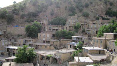 روستای تین