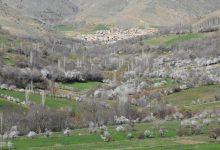 روستای گوشخانی - بهار 1393