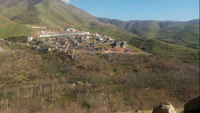 شهر بیاره