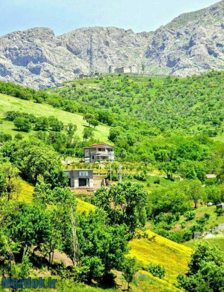 طبیعت زیبا و سرسبز روستای چشمه میران - شهرستان جوانرود