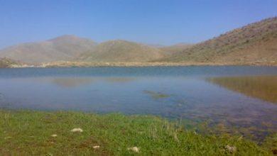 روستای میرعبدلی - میراولی