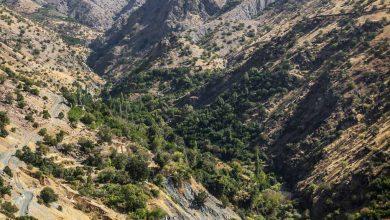 روستای سرریز